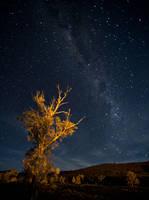 The Milky Way by oliau