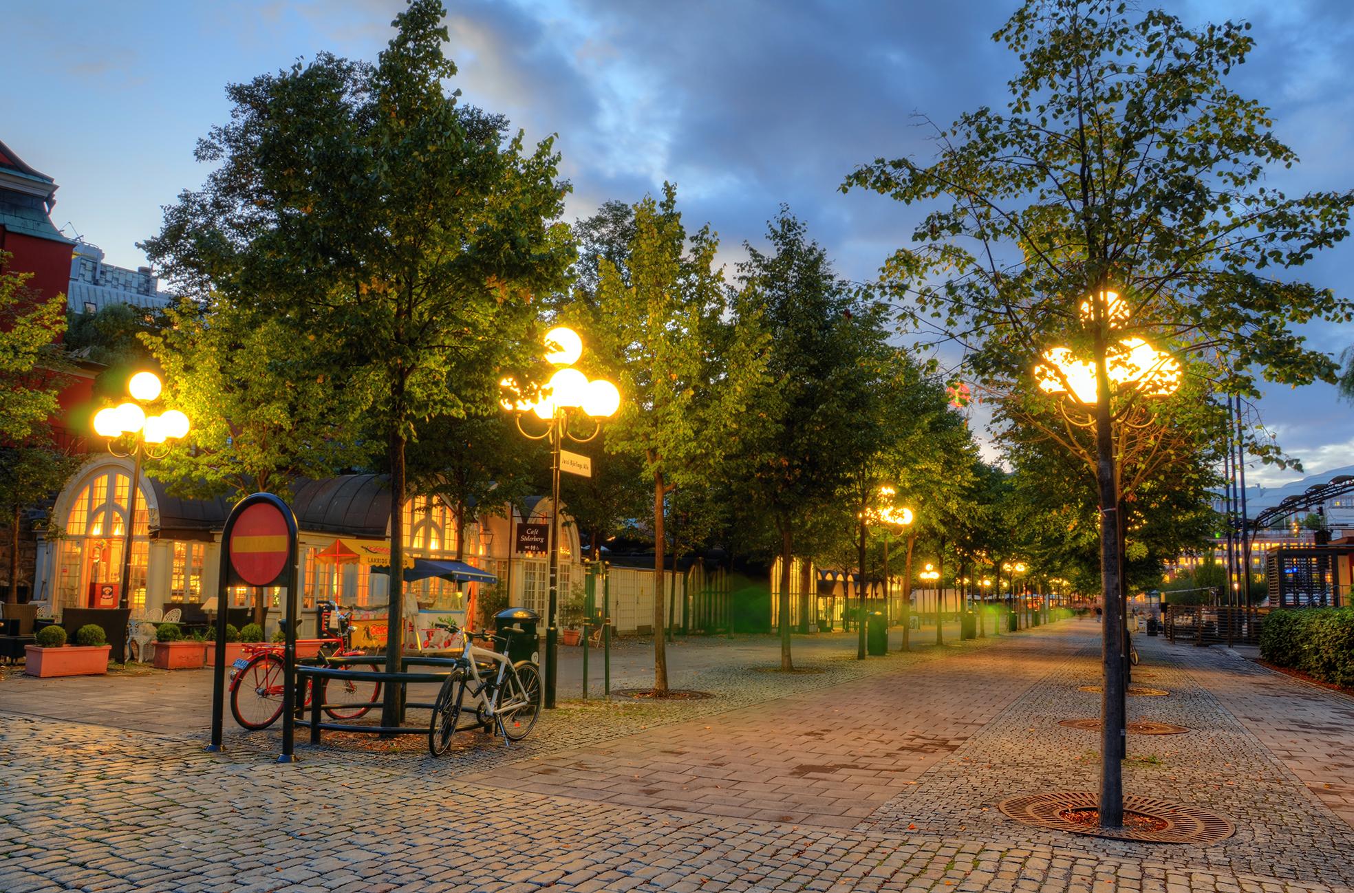 A Cobblestone Avenue by HenrikSundholm