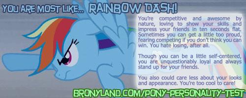 Banner Rainbowdash by ZeroBeatsBlue