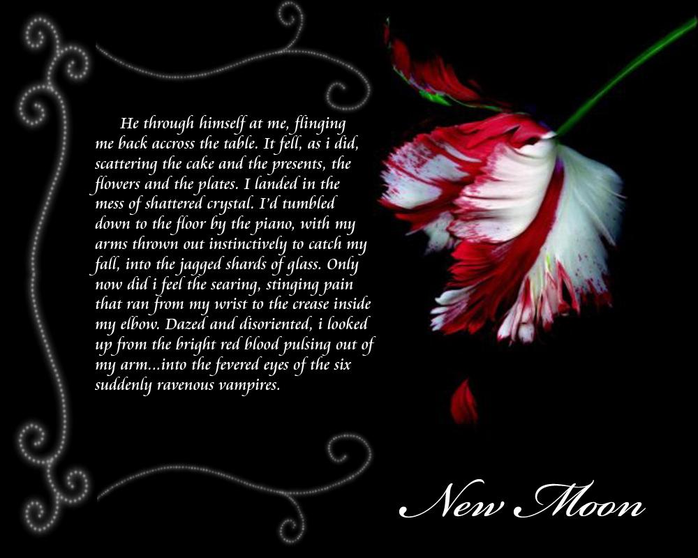 http://fc04.deviantart.com/fs39/f/2008/341/7/d/New_Moon_Wallpaper_by_WolvesOfTheTwilight.jpg