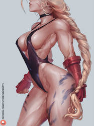 cammy (sfii victory) by cutesexyrobutts