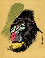 Mandril Colored by RodrigoDiazAravena