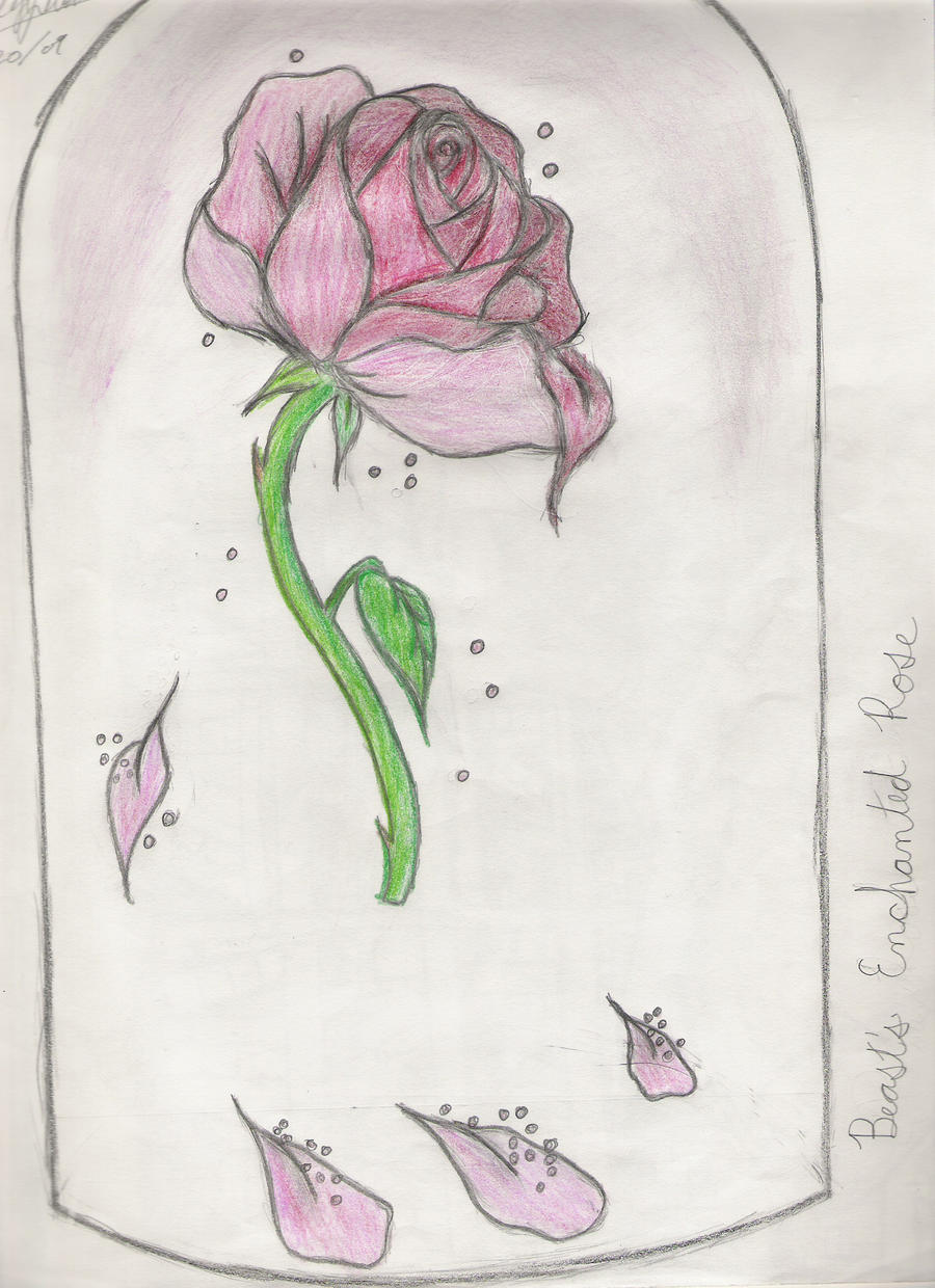 Enchanted Rose Drawing: Beast's Enchanted Rose By Dark-of-the-Moon On DeviantArt