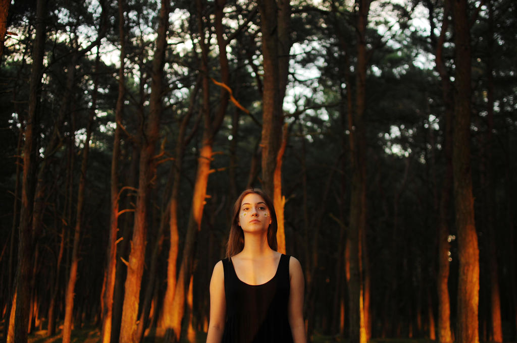 HOW WE QUIT THE FOREST kaks by duchessowy