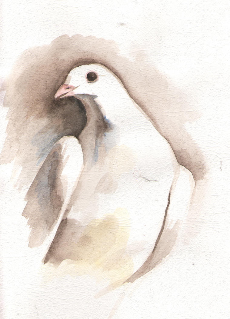 white dove paintwhite dove by MaryPopins on DeviantArt