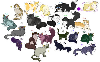 HS Kitties by Nire-chan