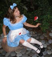 Wondering in Wonderland by Little-Princess-Kate