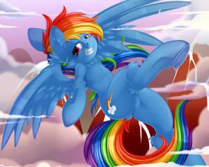 Com - Rainbow Dash (YCH)