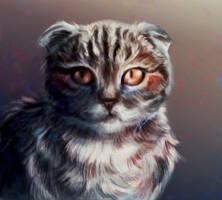 Big eyes by MarkotnePierniki