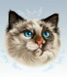 Queen: Sharlotta by MarkotnePierniki