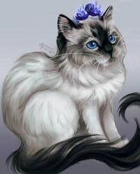 I'm fluffy and I know it by MarkotnePierniki
