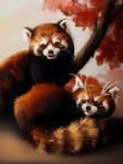 Once upon a panda by MagdaSleboda