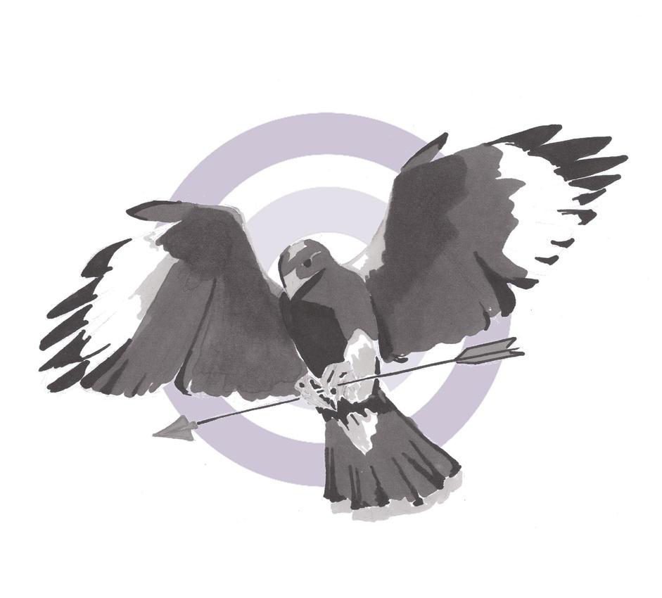 Hawkeye by TDust
