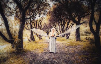 Daenerys by Tori-Tolkacheva