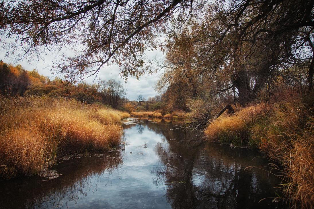Autumn mood by Tori-Tolkacheva