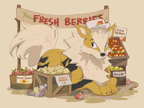 arcanine berry merchant