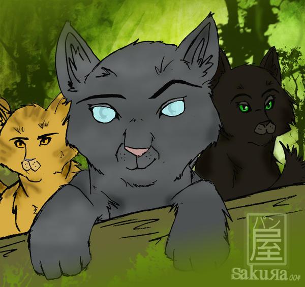 Warriors The Prophecies Begin Book 3: Warriors: The Power Of Three By Sakura004 On DeviantArt