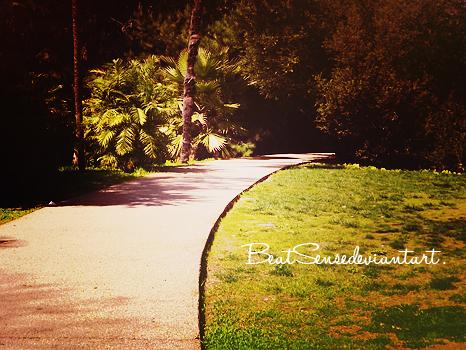 photography .OO3 by beatsense
