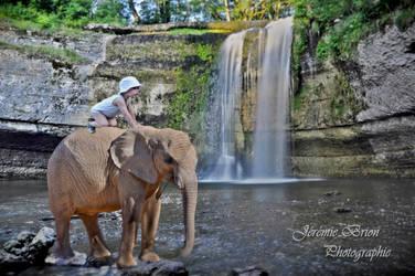 a dos d elephan