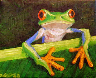 Red-Eyed Tree Frog by uhlrik