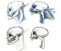 Linda Stage 2 Skulls WIP 2 by uhlrik