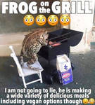 Frog on the Grill. Wonder what he is making