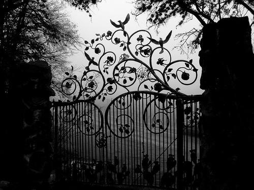 Uniones arregladas - Página 4 Garden_with_death_roses_by_godsgirl33-d4yei2i