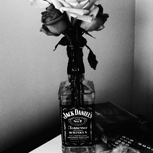 jack daniels bottle tumblr - photo #14