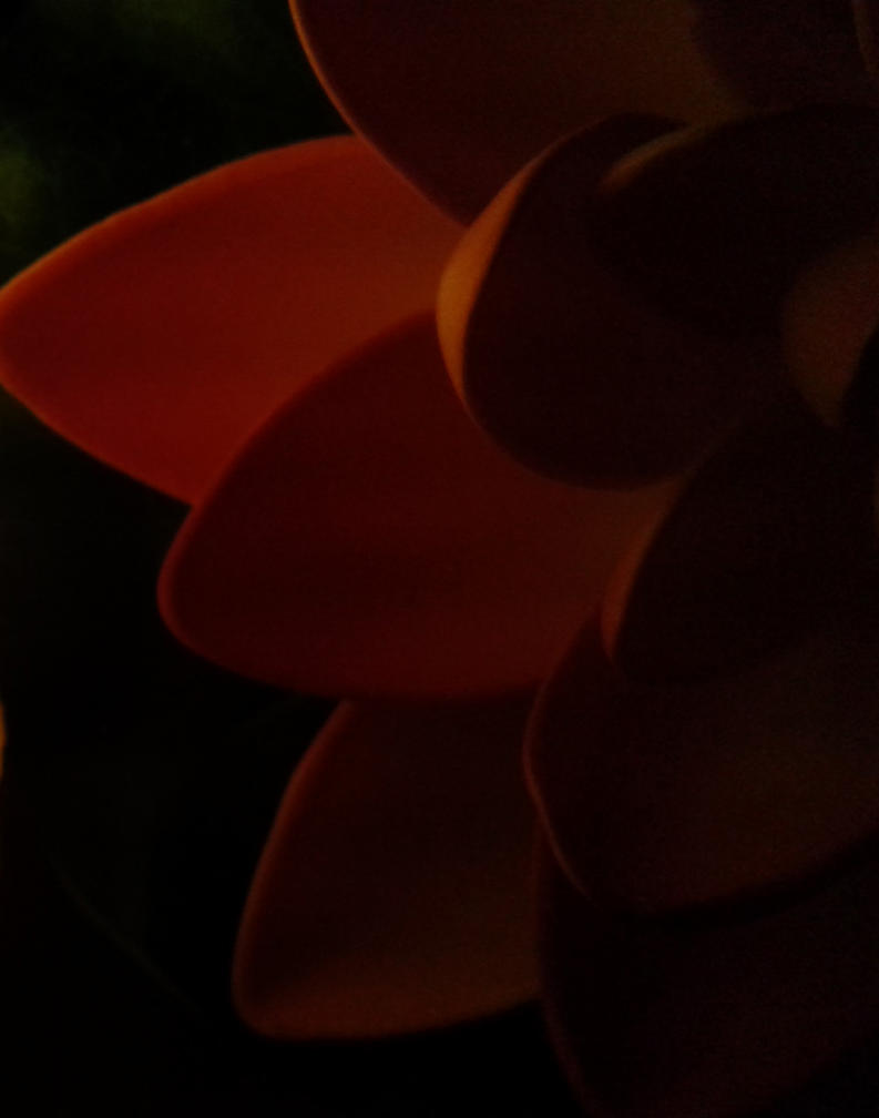 darkness by ishta00