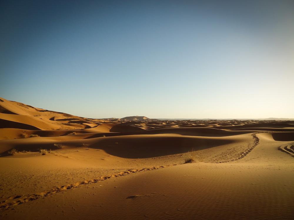 Sahara by serefisler