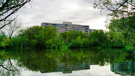Apartments Over Morning Pond