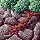 Tree growing between rocks