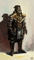 knight concept by Omuk