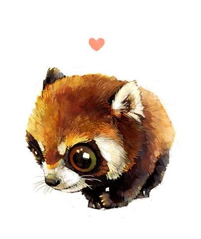 Dessin Dun Panda Roux By Misspandaroux On Deviantart