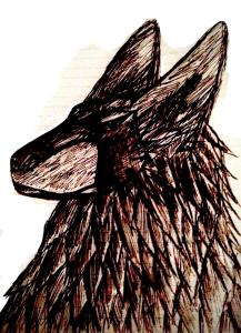HaloExodus's Profile Picture