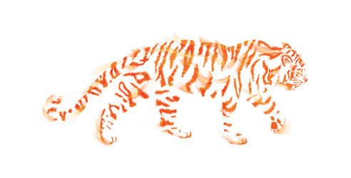 Tiger by Silnaur
