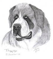 Thompson Fan Art by QuietOwl