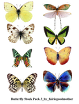 Butterfly Stock Pack 3