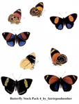 Butterfly Stock Pack 4
