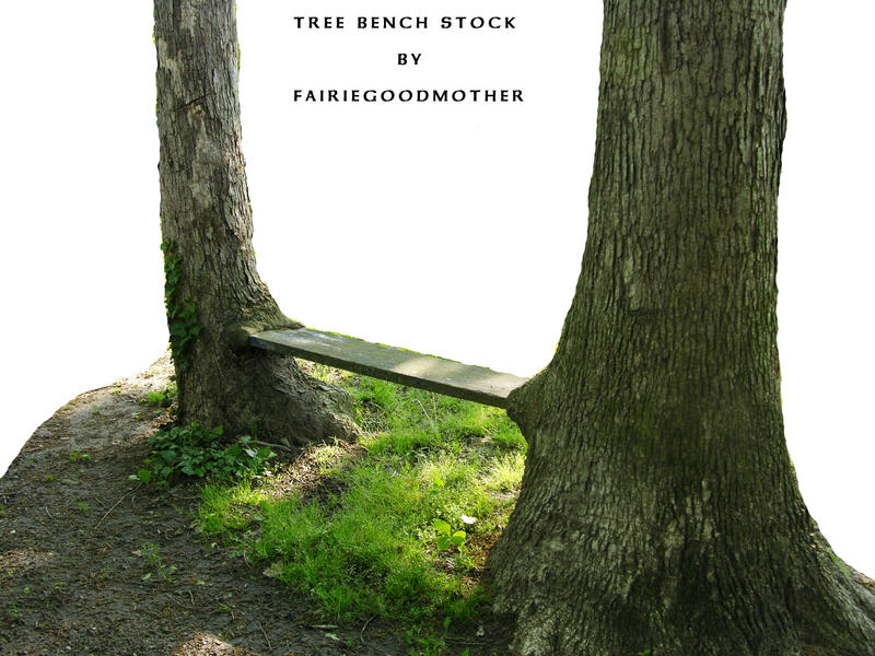 Natural Tree Bench Stock 2