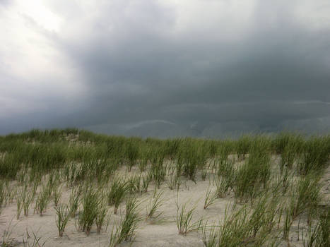 Approaching Storm Stock 5