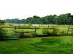 Pasture stock 2