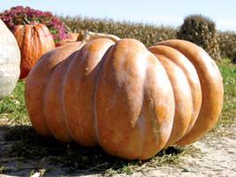 Fairytale Pumpkin 6 by FairieGoodMother