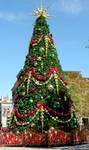 Christmas Tree Stock 2 by FairieGoodMother