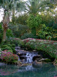 Garden with waterfall stock