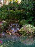 Garden with waterfall stock 2