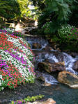 Garden with waterfall stock 6