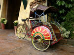 Bicycle Cart 3
