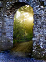 Premade Background Stock 56 by FairieGoodMother