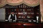 Bartender and Bar Stock